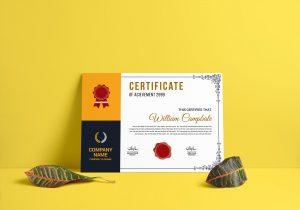 Training Certificate Template